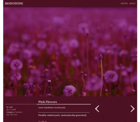 monotone_pink.jpg
